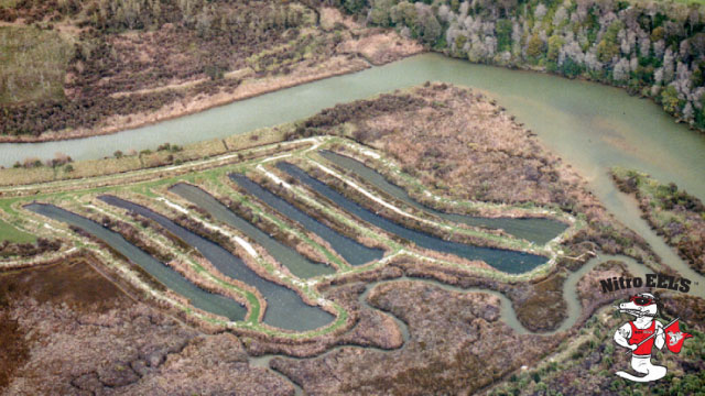 Aquaculture-Ponds-Aerial