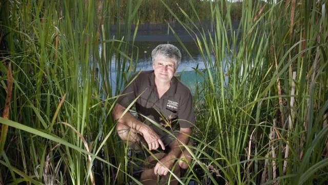 Charlie Mitchell, Marine Biologist
